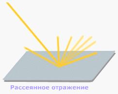 Тарталетки, Морковки, Бобры & Ко