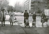 http://images.vfl.ru/ii/1568436246/9a6f2d78/27856324_s.jpg