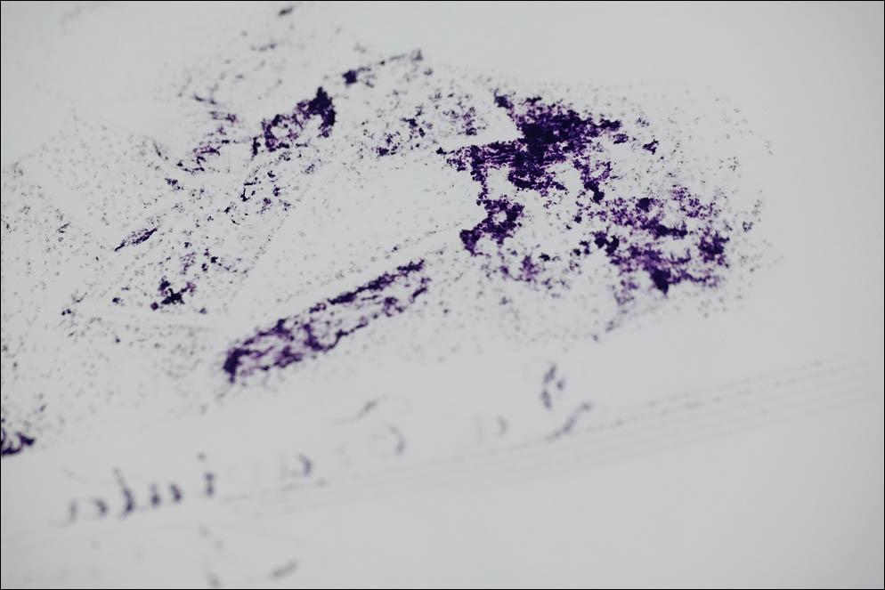 Diamine Scribble Purple. Lenskiy.org