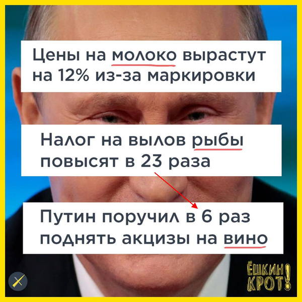 http://images.vfl.ru/ii/1570036700/637c0591/28051061.jpg