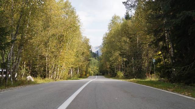 http://images.vfl.ru/ii/1570456041/69d47a91/28106175_m.jpg