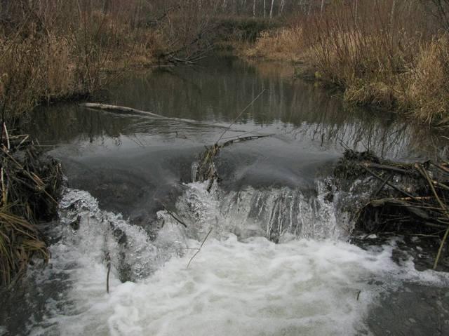 http://images.vfl.ru/ii/1572607477/542e2e28/28406250_m.jpg