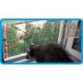 7,защитная сетка для кошек,антикошка киев