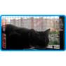 32,защитная сетка для кошек,антикошка