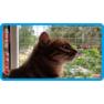39,защитная сетка для кошек,антикошка