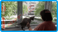 46,защитная сетка для кошек,антикошка