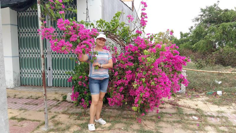 http://images.vfl.ru/ii/1572692064/0278aaf9/28417845_m.jpg