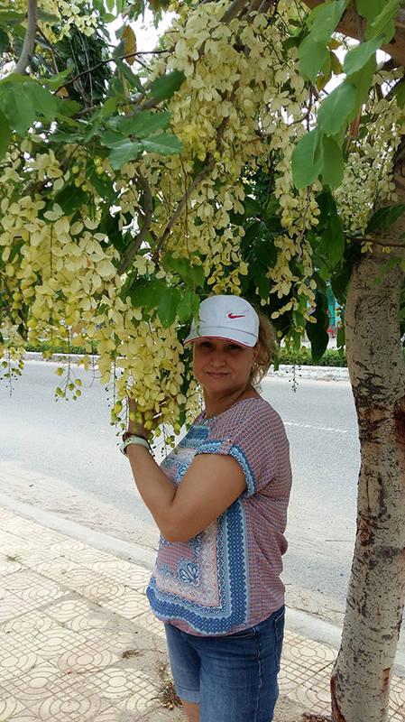 http://images.vfl.ru/ii/1572692064/e8da509a/28417846_m.jpg