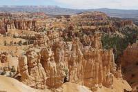 Скалы на дне Брайс-Каньона, шт. Юта. Фото Морошкина В.В.