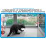 2,защитная сетка решетка для кошек киев,кошки,антикошка киев,сетка на окно,кот стоп,кот stop