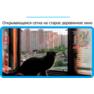 7,защитная сетка решетка для кошек киев,кошки,антикошка киев,сетка на окно,кот стоп,кот stop