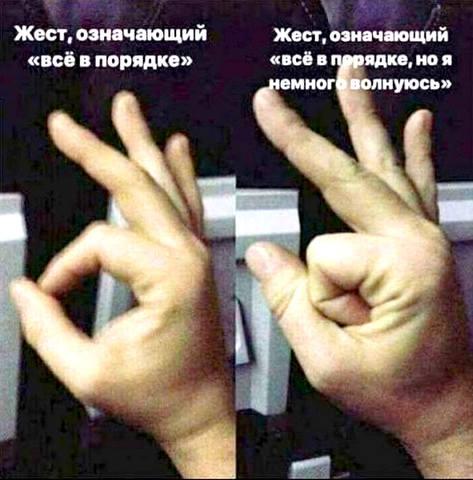 http://images.vfl.ru/ii/1573141724/0e91d28b/28479675_m.jpg
