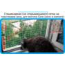 6,защитная сетка решетка для кошек киев,кошки,антикошка киев,сетка на окно,кот стоп,кот stop