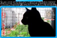 9,защитная сетка решетка для кошек киев,кошки,антикошка киев,сетка на окно,кот стоп,кот stop