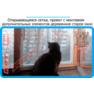 22,защитная сетка решетка для кошек киев,кошки,антикошка киев,сетка на окно,кот стоп,кот stop