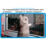 25,защитная сетка решетка для кошек киев,кошки,антикошка киев,сетка на окно,кот стоп,кот stop
