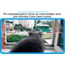 33,защитная сетка решетка для кошек киев,кошки,антикошка киев,сетка на окно,кот стоп,кот stop