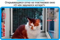 39,защитная сетка решетка для кошек киев,кошки,антикошка киев,сетка на окно,кот стоп,кот stop