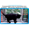 40,защитная сетка решетка для кошек киев,кошки,антикошка киев,сетка на окно,кот стоп,кот stop