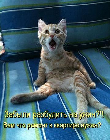 Улыбка (юмор, добрые анекдоты, смешные картинки) - Page 2 28517261