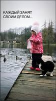 http://images.vfl.ru/ii/1573503846/b0852849/28528160_s.jpg