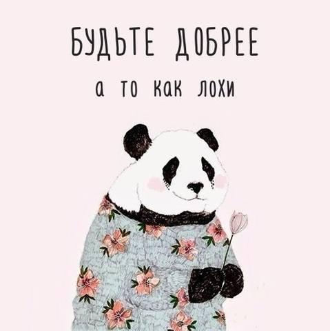 http://images.vfl.ru/ii/1573553793/6eb3bc50/28533258_m.jpg