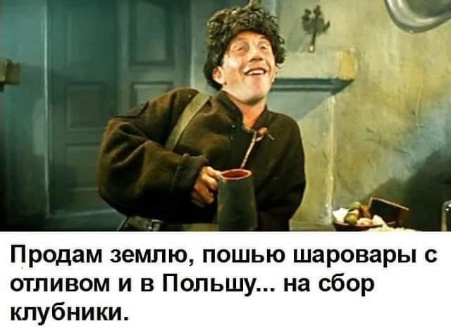 http://images.vfl.ru/ii/1574265439/8ce46912/28630367.jpg