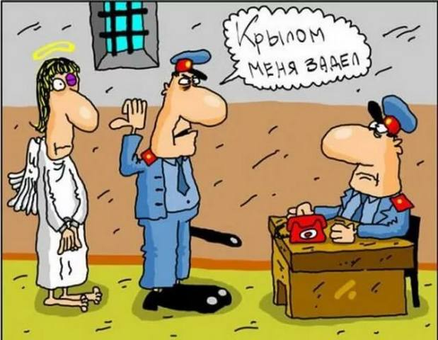 http://images.vfl.ru/ii/1574454703/c7da666b/28658755_m.jpg