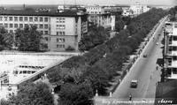 http://images.vfl.ru/ii/1575179638/ab9029d0/28759507_s.jpg