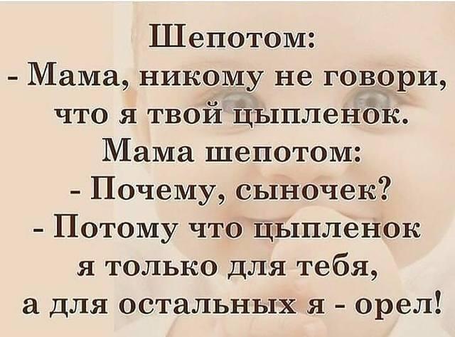 http://images.vfl.ru/ii/1575479699/db36e8ba/28801237_m.jpg
