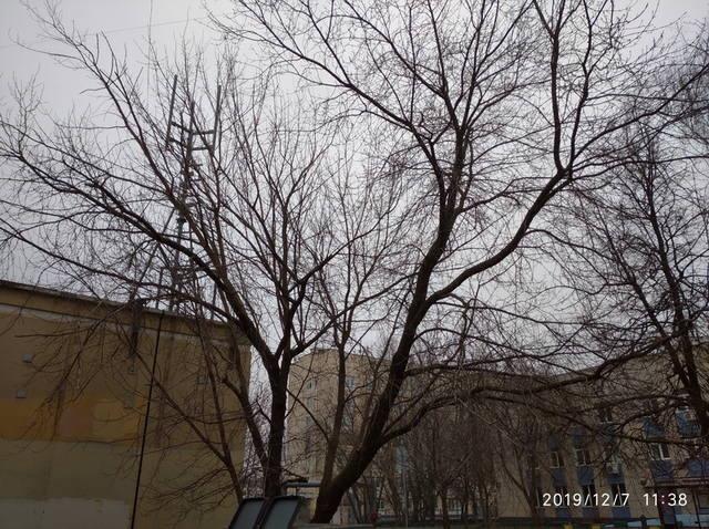 http://images.vfl.ru/ii/1575712275/37a682dc/28829483_m.jpg