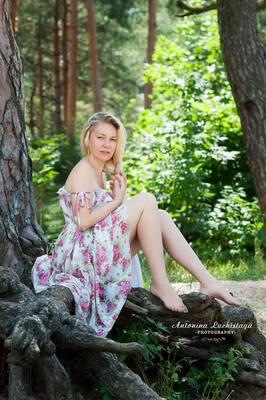http://images.vfl.ru/ii/1577473932/1fa763d4/29045469_m.jpg