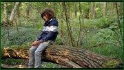 http//images.vfl.ru/ii/193527/c284b10f/29241894.jpg