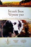 http//images.vfl.ru/ii/19372139/31d77566/292416_s.jpg