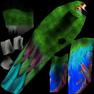 попугай зелёный