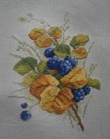 http://images.vfl.ru/ii/1580916070/a7319bdc/29451134_s.jpg