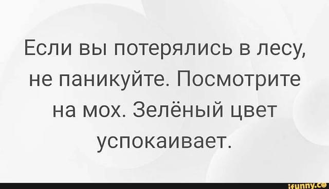 http://images.vfl.ru/ii/1580994824/7eb48fa5/29462664_m.jpg