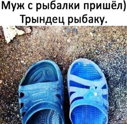 http://images.vfl.ru/ii/1581787026/2b0ebb3f/29586832_m.png