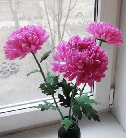 http://images.vfl.ru/ii/1583481886/bdeb0d14/29789076_m.jpg