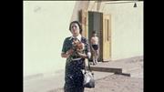 http//images.vfl.ru/ii/1586329396/02be8ca7/30136244.jpg