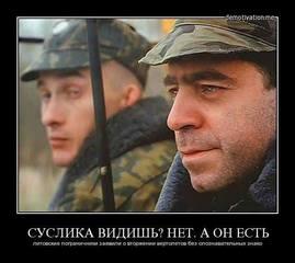 http://images.vfl.ru/ii/1587144343/086b9c93/30250717.jpg
