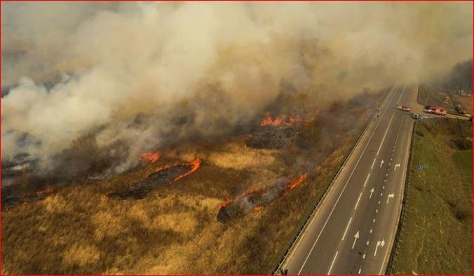СБУ: пожары в зоне отчуждения ЧАЭС — поджог