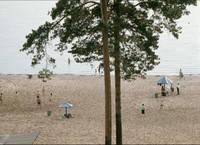 http://images.vfl.ru/ii/1588600707/e200928a/30408005_s.jpg