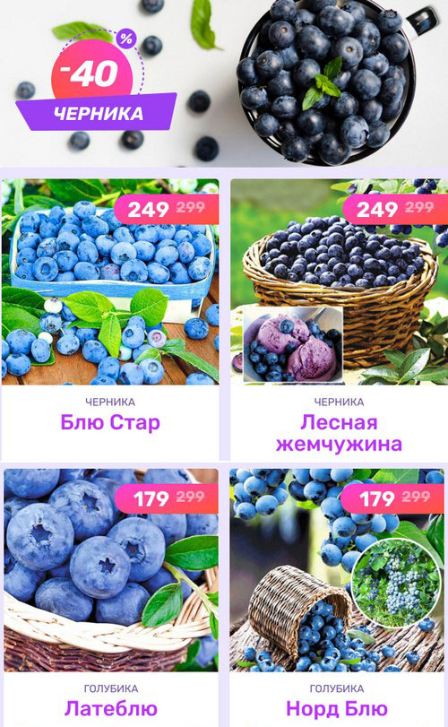 Промокод Беккер. Скидка 50% на плодовые деревья + подарок