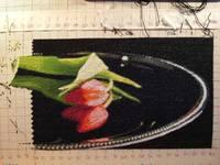 http://images.vfl.ru/ii/1590245301/0688b8ed/30598197_s.jpg