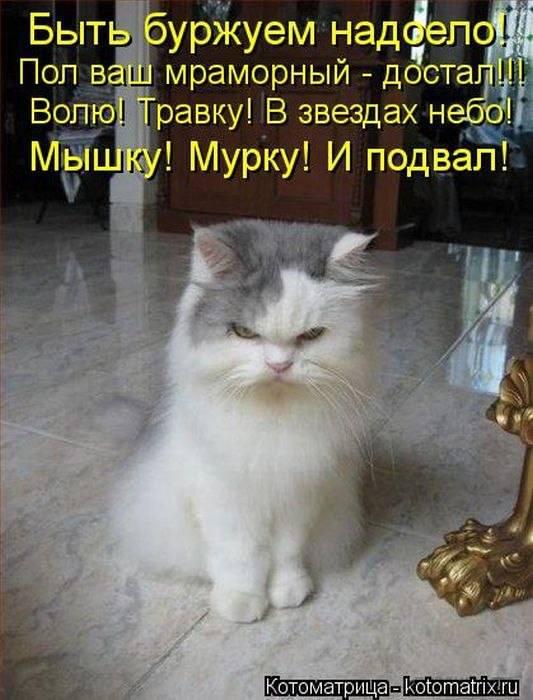 http://images.vfl.ru/ii/1592668950/5c9d396e/30860722_m.jpg