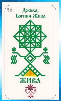 руна Жива