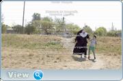 http//images.vfl.ru/ii/1593963997/6edb3986/30994010.png