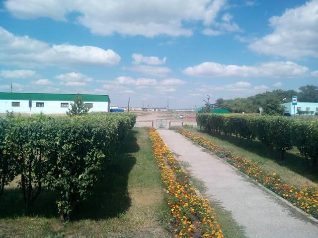 http://images.vfl.ru/ii/1595955011/70e90266/31191276_m.jpg