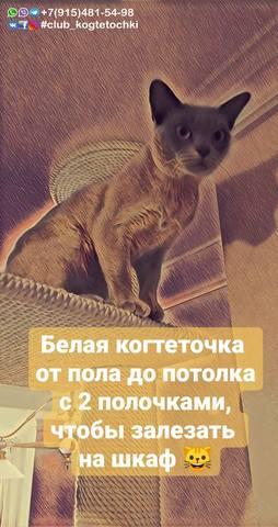 http://images.vfl.ru/ii/1596466463/64040573/31244130_m.jpg